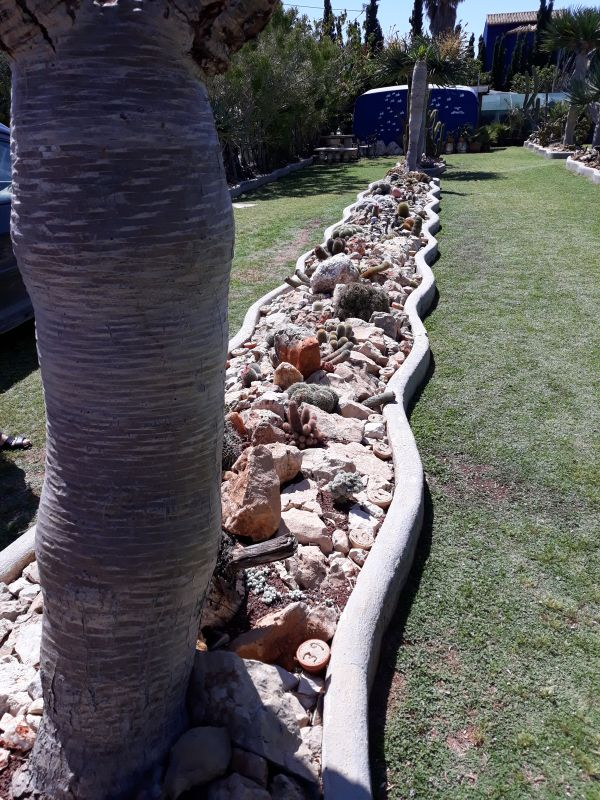 The Costa Blanca Branch of The Mediterranean Garden Society