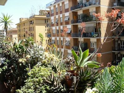 A Terrace Overflowing With Plants In Pots Rome Photo